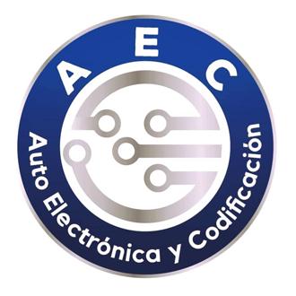 Auto Electrónica y Codificación